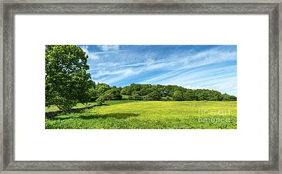 Field Of Yellow Framed Print by Adrian Evans