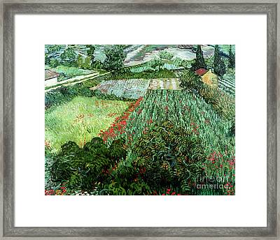 Field With Poppies Framed Print by Vincent Van Gogh