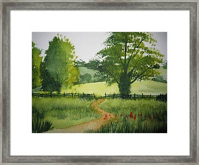 Fields Of Green Framed Print by Shirley Braithwaite Hunt