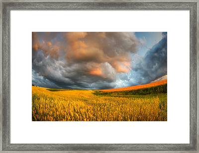 Fields Of Storm Framed Print by Piotr Krol (bax)