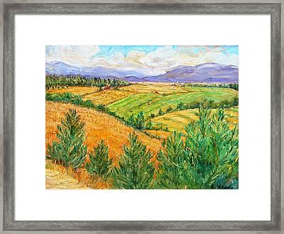 Fields Of Summer Framed Print by Ethel Vrana
