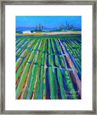 Fields Framed Print by Vanessa Hadady BFA MA