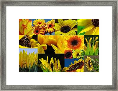 Fiery Blooms  Framed Print by Juergen Roth