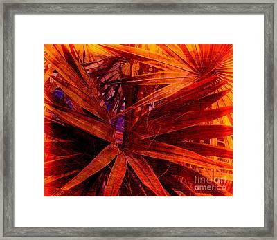 Fiery Palm Framed Print by Susanne Van Hulst