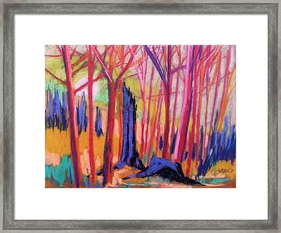 Fiery Sunrise Framed Print by John  Williams