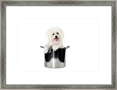 Fifi Helps With Dinner Framed Print by Michael Ledray