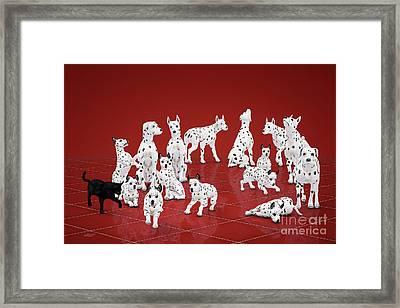 Fifteen Dalmations Framed Print by Jutta Maria Pusl