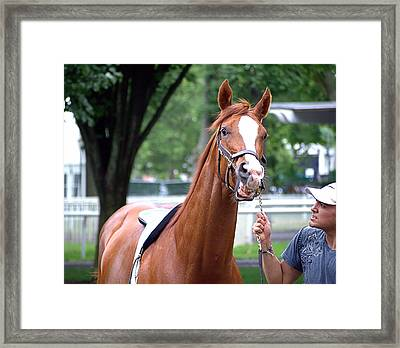 Fighter Framed Print by  Newwwman