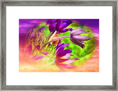 Fighting Circumstances Framed Print by Cathy  Beharriell
