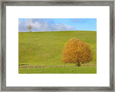 Final Show Framed Print by Nicholas Blackwell