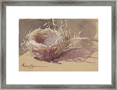 Finch Nest Framed Print by Tracie Thompson