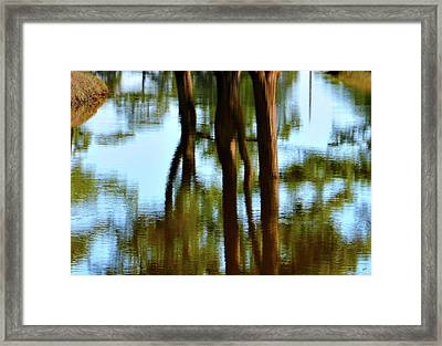 Fine Art Photography - Reflections Framed Print by Gerlinde Keating - Keating Associates Inc