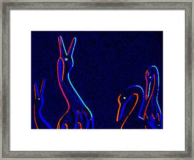 Fine Feathered Friends Framed Print by Will Borden