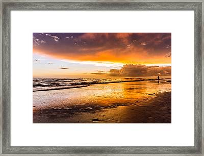 Fire Bug Framed Print by Christopher Saunders