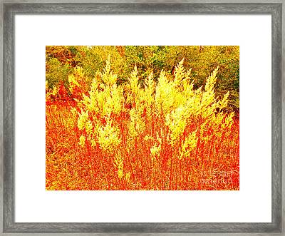 Fire Dances Framed Print by Chuck Taylor