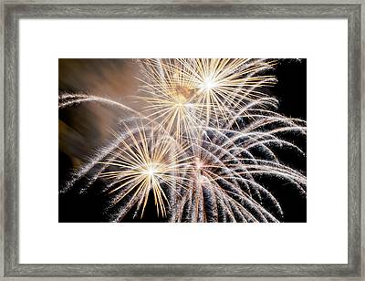 Fire Flowers Framed Print by James Steele