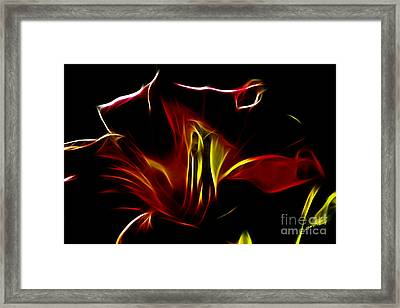 Fire Lily Framed Print by Cheryl Young