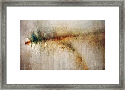 Fire Walk With Me Framed Print by Scott Norris