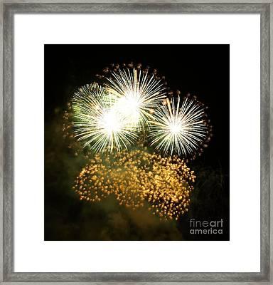 Fireworks Framed Print by Alfredo Rodriguez
