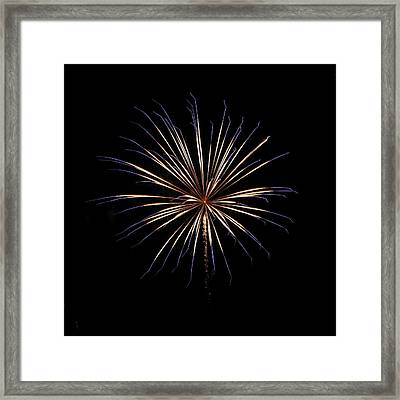 Fireworks From A Boat - 1 Framed Print by Jeffrey Peterson