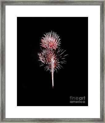 Fireworks10 Framed Print by Malcolm Howard