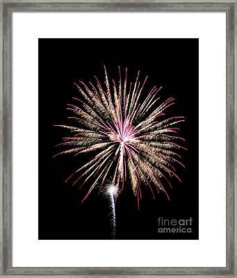 Fireworks4 Framed Print by Malcolm Howard