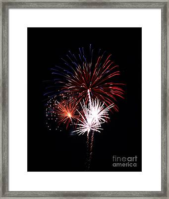 Fireworks9 Framed Print by Malcolm Howard