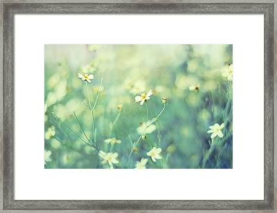 First Impression Framed Print by Amy Tyler