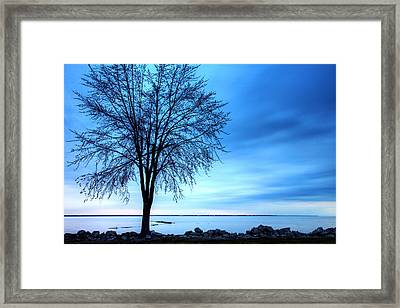 First Light Framed Print by James Marvin Phelps