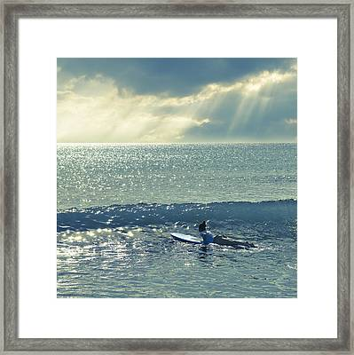 First Of The Day Framed Print by Laura Fasulo