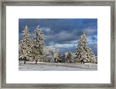 First Snow Of The Year Framed Print by Lois Bryan