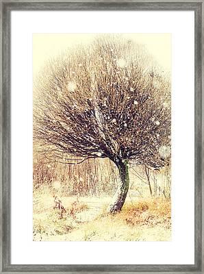 First Snow. Snow Flakes Framed Print by Jenny Rainbow