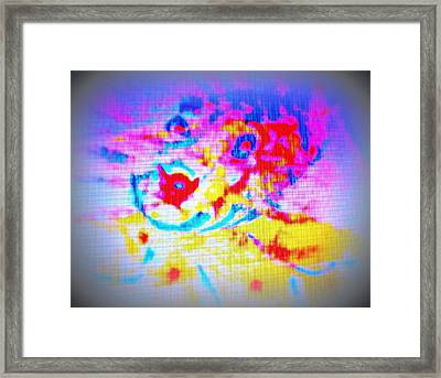 Fish Facing The Surface  Framed Print by Hilde Widerberg