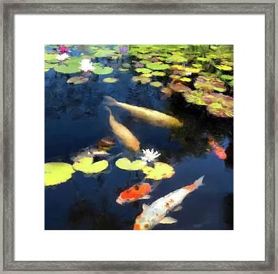 Fish Pond Framed Print by Gary Grayson