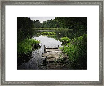 Fishing Hole - Paint Fx Framed Print by Brian Wallace