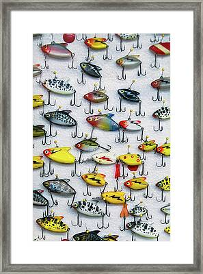 Fishing Lures Framed Print by Garry Gay