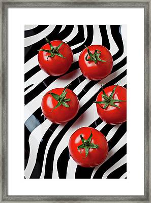 Five Tomatoes  Framed Print by Garry Gay