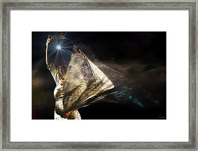 Flamenco Passionate Framed Print by Jean Francois Gil