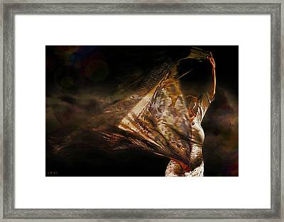 Flamenco Traditional Dance Framed Print by Jean Francois Gil