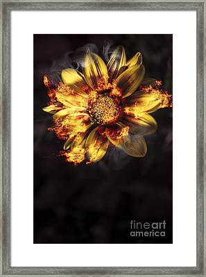 Flames Of Passion And Intimacy Framed Print by Jorgo Photography - Wall Art Gallery