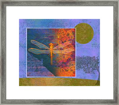 Flaming Dragonfly Framed Print by Mary Ogle
