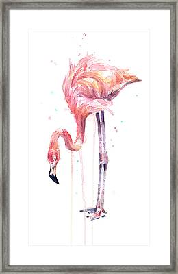 Flamingo Illustration Watercolor - Facing Left Framed Print by Olga Shvartsur