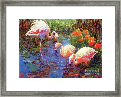 Flamingos, Tangerine Dream Framed Print by Jane Small
