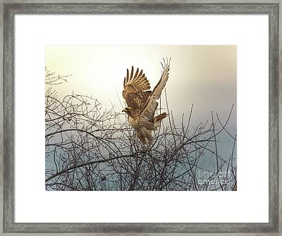 Flashing The Truckers Framed Print by Robert Frederick