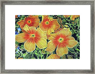 Flax Framed Print by Beverly Fuqua