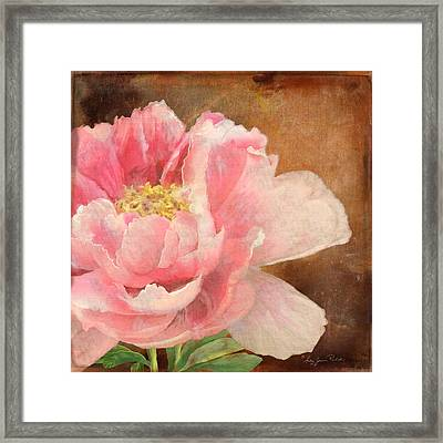 Fleeting Glory - Peony 2 Framed Print by Audrey Jeanne Roberts