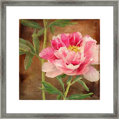 Fleeting Glory - Peony 3 Framed Print by Audrey Jeanne Roberts