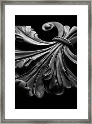 Fleur De Lis I Framed Print by Tom Mc Nemar