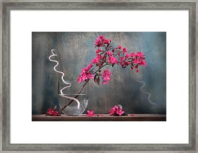 Fleur Framed Print by Manfred Lutzius