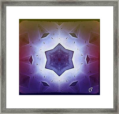 Flight Of Fancy Framed Print by Christine Paris